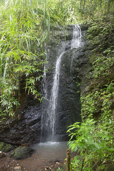 Photo de A small waterfall between the first and second Kuyawyaw fallsKuyawyaw - Philippines