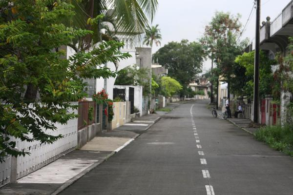 Picture of Chinese cemetery (Philippines): Street with graves and trees