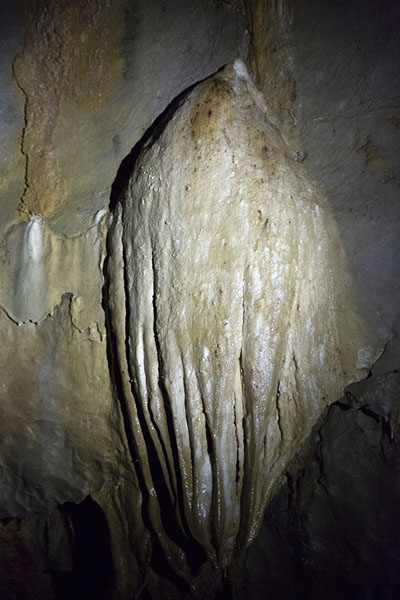Foto de Stalagtite hanging from the ceiling of the subterranean river cave system - Filipinas - Asia