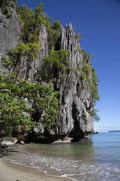 Photo de Limestone cliffs near the entrance of the subterranean riverSabang - Philippines