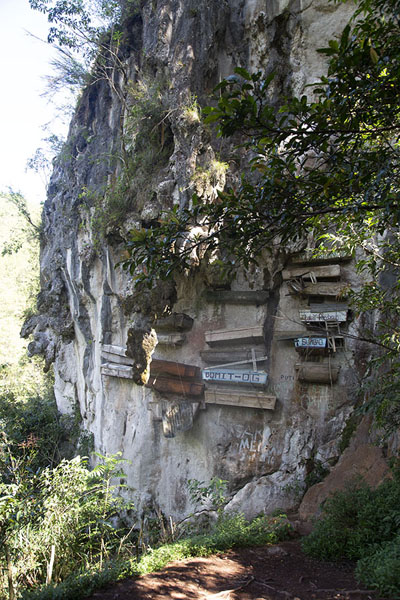 Photo de Cliff with hanging coffins near Sagada - Philippines - Asie