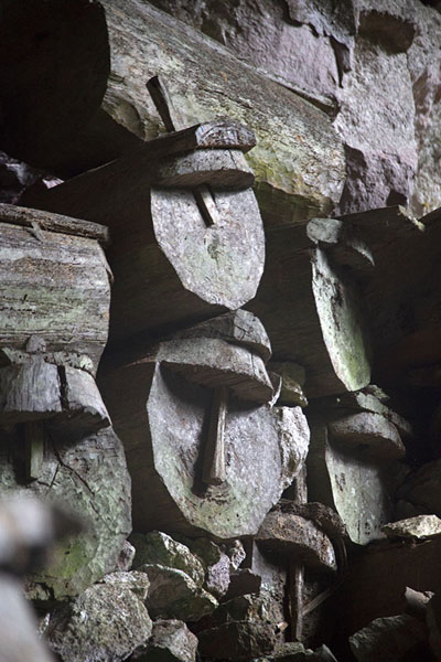 Close-up of coffins in Lumiang burial cave, south of Sagada | Hanging coffins of Sagada | 非律賓