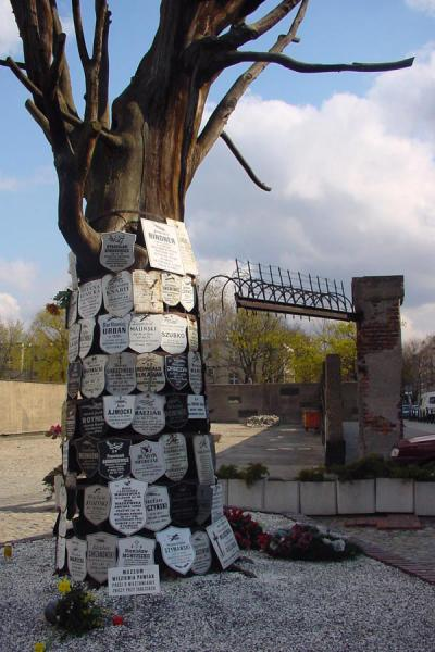 Dead tree with commemorative plaques | Pawiak Prison Museum | Poland