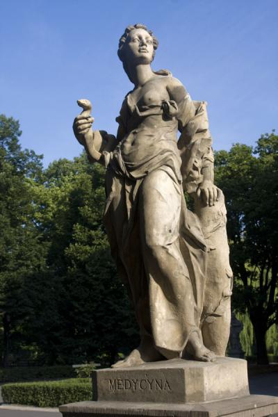Picture of Gracious woman representing Medicine: statue in Saxon Garden