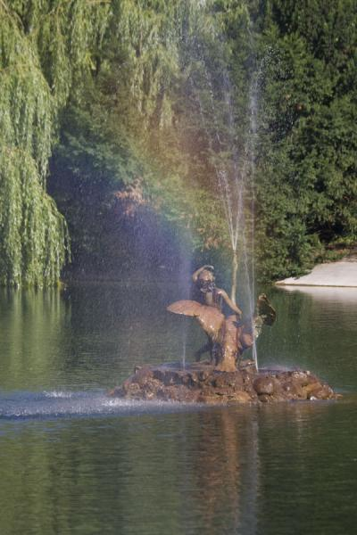 Boy with swan surrounded by a rainbow | Saxon Garden | Poland