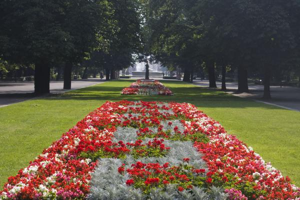 Foto de Flower bed on the main axis of Saxon GardenVarsovia - Polonia
