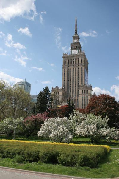 Picture of Tower of the Palace of Culture and surrounding park
