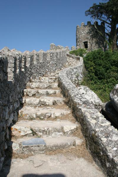Steep stairs running up to a watchtower and tree at the Moorish Castle | Moorish Castle | Portugal