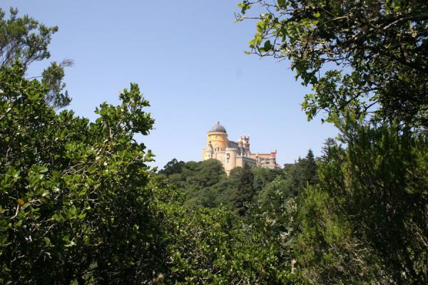 Picture of Palace of Pena (Portugal): Palace of Pena viewed from a distance