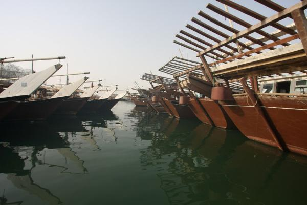 Dhows moored in the harbour of Al Khor | Al Khor pescateurs | Qatar