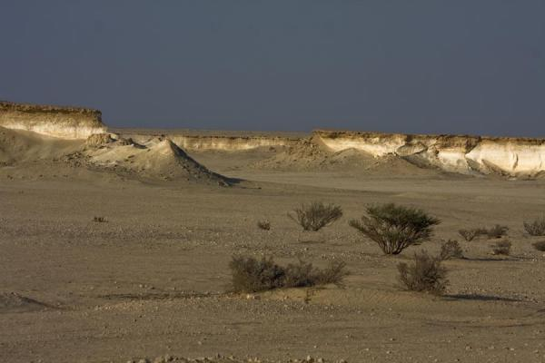 Dry shrubberies in a desert plain surrounded by limestone formations | Bir Zekreet landscape | Qatar