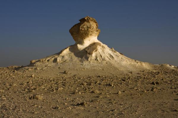 One of the desert mushrooms in the landscape of Bir Zekreet | Bir Zekreet landscape | Qatar