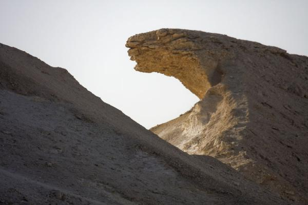 Foto di Leopard-shaped limestone formation in the landscape around Bir ZekreetPaesaggio di Bir Zekreet - Qatar