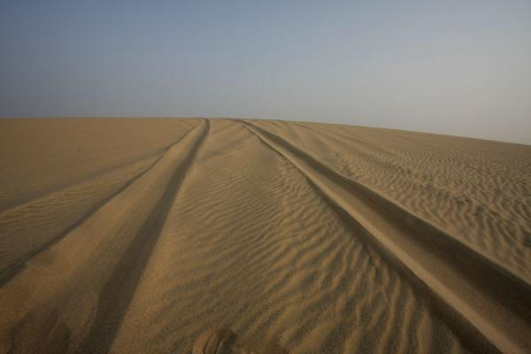 Picture of Qatar (Tracks in a sand dune in the Khor al Adaid area)