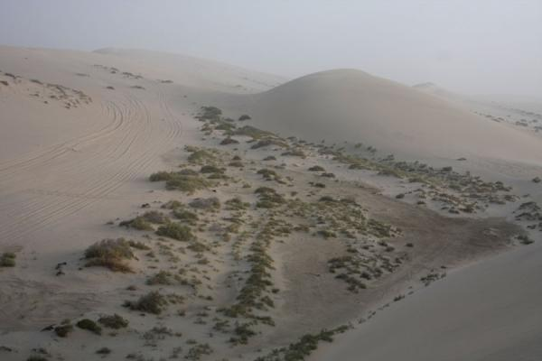 Foto di View over some of the sand dunes of Khor al AdaidKhor al Adaid - Qatar