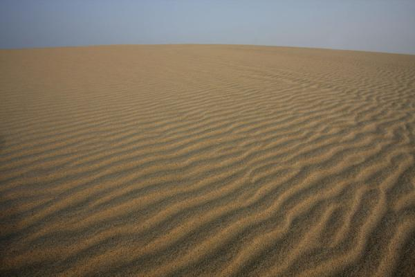 {fini} Girl, you gotta be what tomorrow will need | ft. Sylena Khor-al-adaid-desert10s
