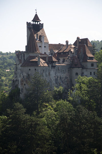 Foto de View of Bran castle from the opposite hillBran - Rumania