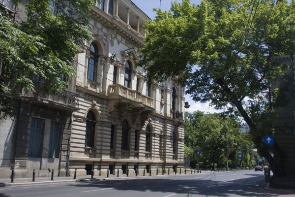 Some parts of Calea Victoriei are tree-lined | Calea Victoriei | 罗马尼亚