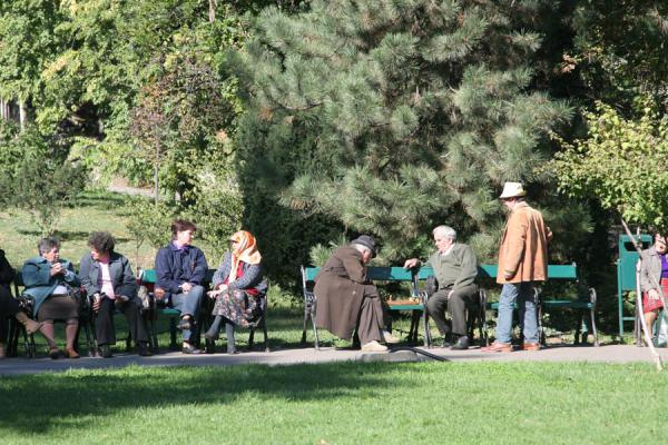 Picture of Romanians relaxing in Cismigiu Gardens