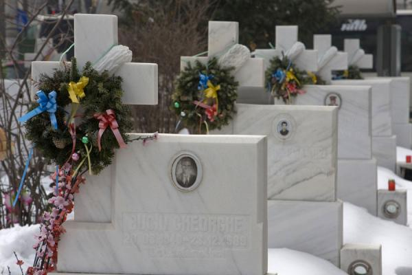 Picture of Cemetery of Heroes of Revolution