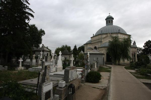 Picture of Chapel and aisle in the central area of Ghencea cemetery