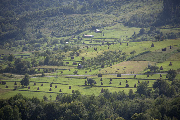 Foto di Iza Valley seen from a ridgeValle Iza - Rumania