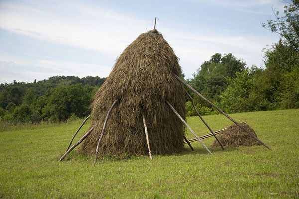 Foto di Haystack supported by wooden sticks on a hillValle Iza - Rumania