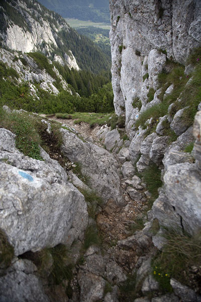 Picture of The well-marked climb up Piatra Mică has some steep sections - Romania - Europe