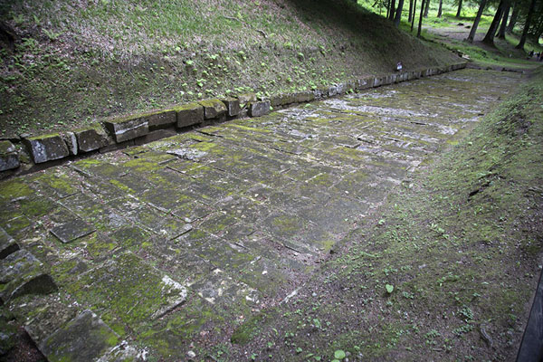 Foto de Ruins of the Dacian road between the fortification and the sacred areaSarmizegetusa Regia - Rumania