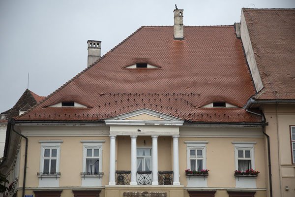 Building with the typical eyes on the main square of Sibiu | Sibiu | Roemenië
