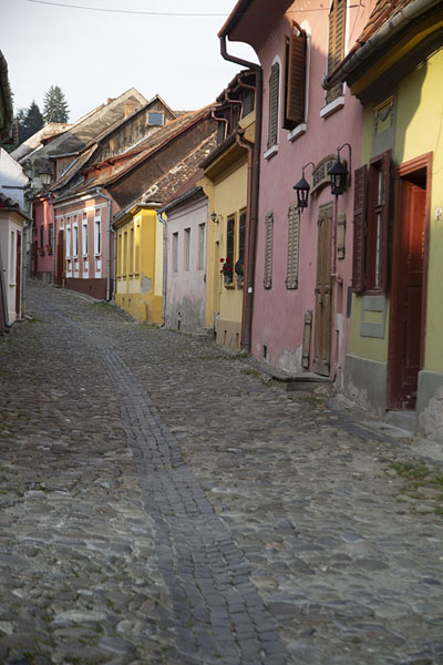 Cobble-stoned streety in Sighișoara with pastel-coloured houses | Sighișoara | Roemenië