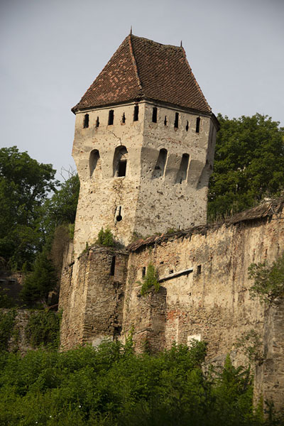Foto de One of the defensive towers of the Sighișoara citadelSighișoara - Rumania