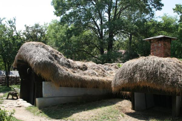 Underground houses can be found in a hot regions of the country | Dorpsmuseum Satului | Roemenië