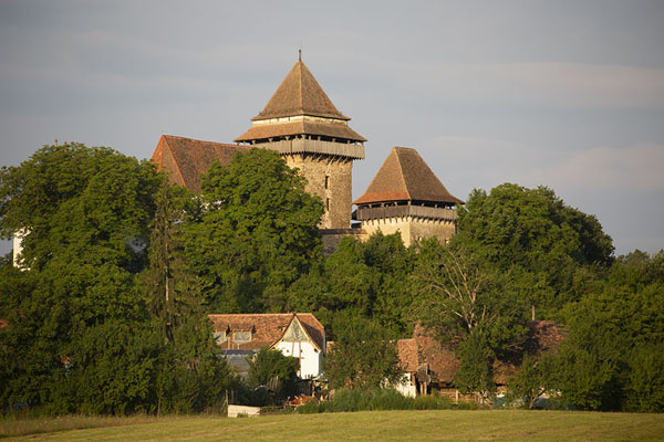 Distant view of the fortified church of Viscri | Viscri | Rumania