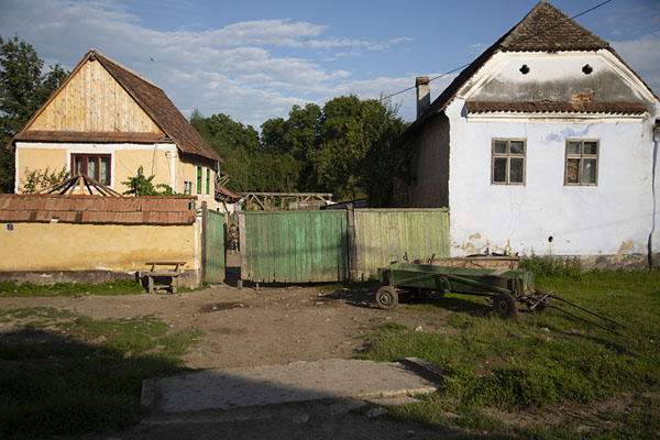 Picture of Viscri (Romania): Farmhouses on a street in Viscri