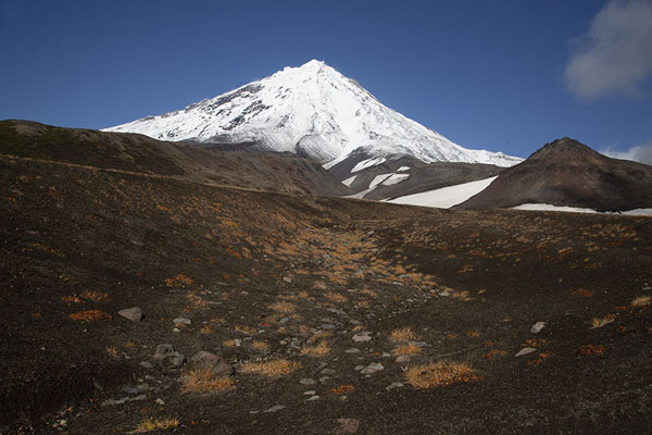 Koryaksky Volcano seen from the volcanic plains | Avachinsky Pass | Russia
