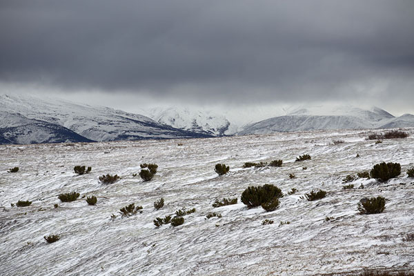 Snowy landscape on the plateau crossed by the Vulkashiki trail | Bystrinsky Nature Park | Rusia