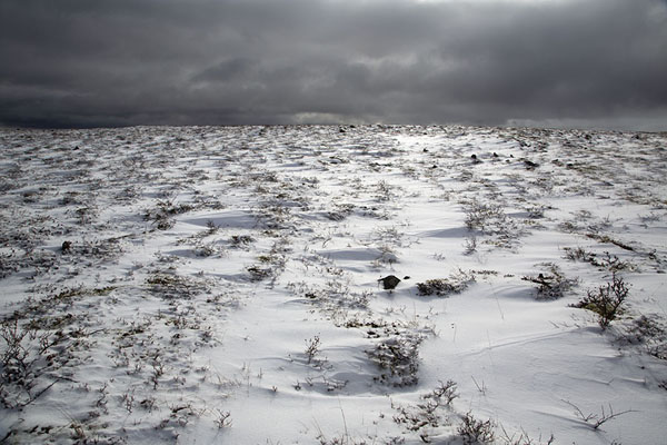 Snow field with dark clouds at the horizon | Bystrinsky Nature Park | Rusia