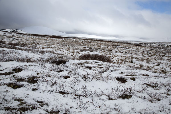 Foto di Field of snow with snow-covered mountains at the horizonBystrinsky Nature Park - Russia