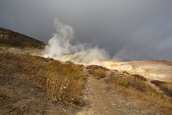 Steam in the air above the small Valley of the Geysers | Mutnovsky Valley of Geysers | Rusland