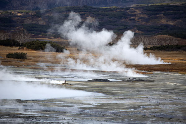 Steam coming off thermal springs in Uzon Caldera | Uzon Caldera | Rusland