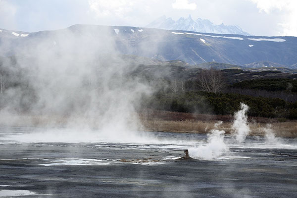 Thermal lake in Uzon Caldera with Bolshoy Semyachik volcano in the background | Uzon Caldera | 俄罗斯