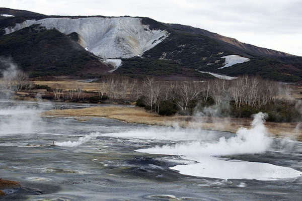 Thermal lake emitting steam in Uzon Caldera | Uzon Caldera | 俄罗斯