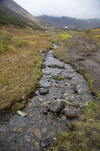 Stream running through the valley of Vachkazhets | Vachkazhets | Rusland