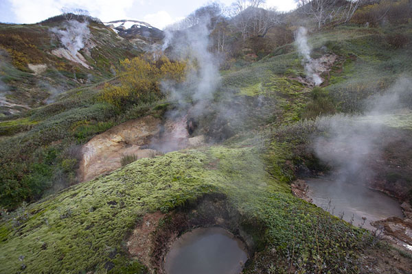 Pools with steam in the Valley of Geysers | Valley of Geysers | Russia