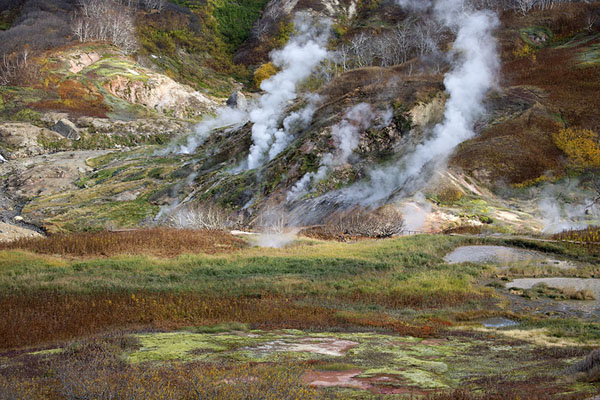 Steam erupting from the ground in the Valley of Geysers | Valley of Geysers | Russia