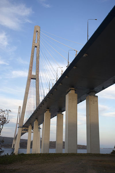 View of Russky bridge from below | Vladivostok bruggen | Rusland