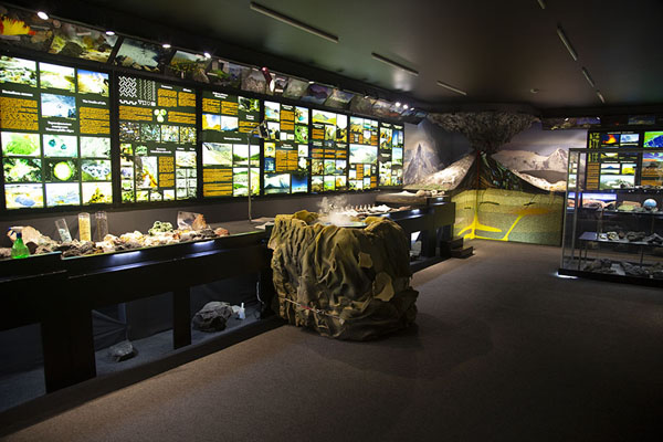 Photo de The first room of the museum - Russie - Europe