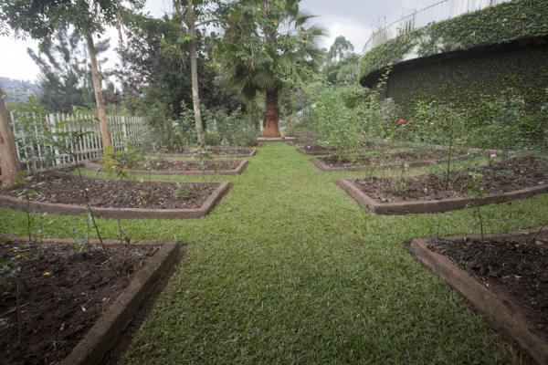The Rose Garden of the Kigali Memorial Centre | Kigali Genocide Memorial Centre | Rwanda