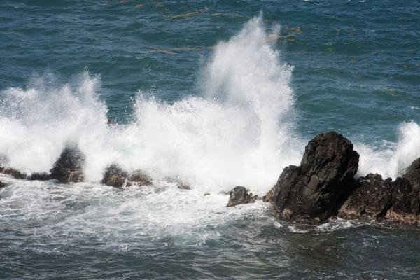 Picture of Crushing wave on a black lava rock in the sea on the north shore of St Kitts